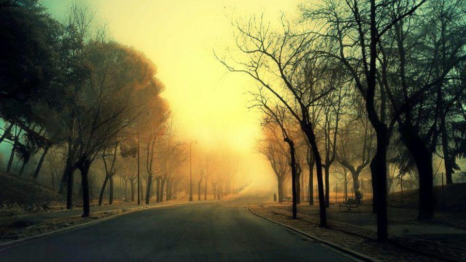 sonidos de la naturaleza consejos para una relajación fácil 16 9
