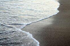 Las posturas en la meditación. Una guía diaria para el éxito