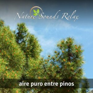 Nature Sounds Relax - 03 Aire puro entre pinos