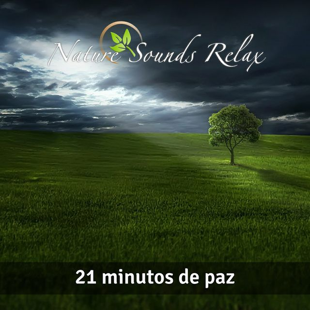 Nature Sounds Relax 21 Minutos de paz