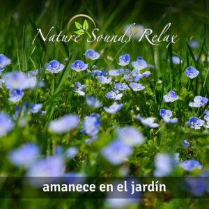 Nature Sounds Relax - Episodio 07 Amanece en el jardín