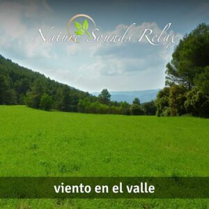 Nature Sounds Relax - Episodio 08 Viento en el valle