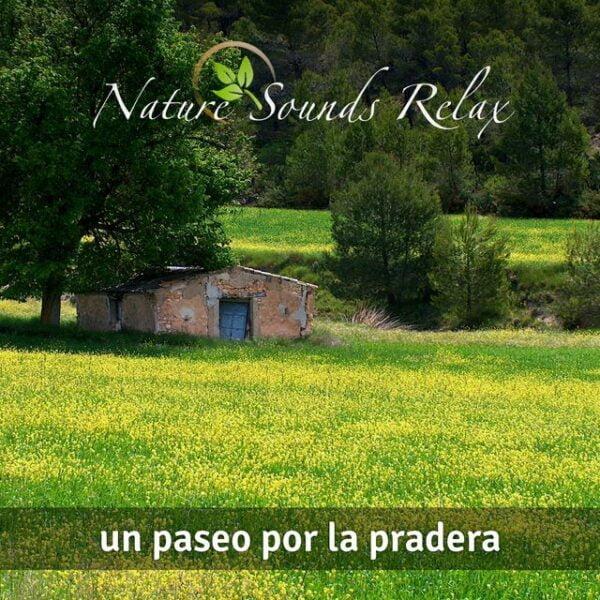Nature Sounds Relax - Episodio 09 Un paseo por la pradera