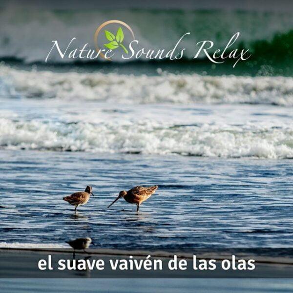 Nature Sounds Relax - Episodio 14 El suave vaivén de las olas