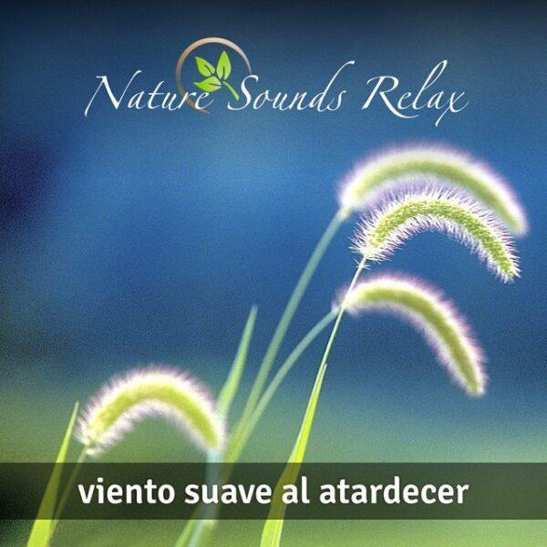 Nature Sounds Relax - Episodio 16 Viento suave al atardecer