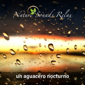 Nature Sounds Relax - Episodio 17 Un aguacero nocturno