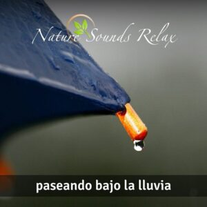 Nature Sounds Relax - Episodio 18 Paseando bajo la lluvia