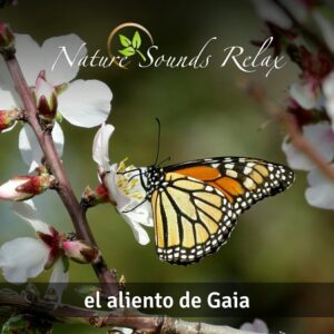 Nature Sounds Relax - Episodio 23 El aliento de Gaia
